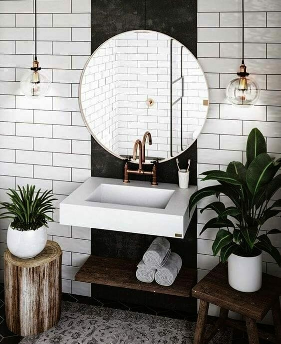 augalai vonios kambariui