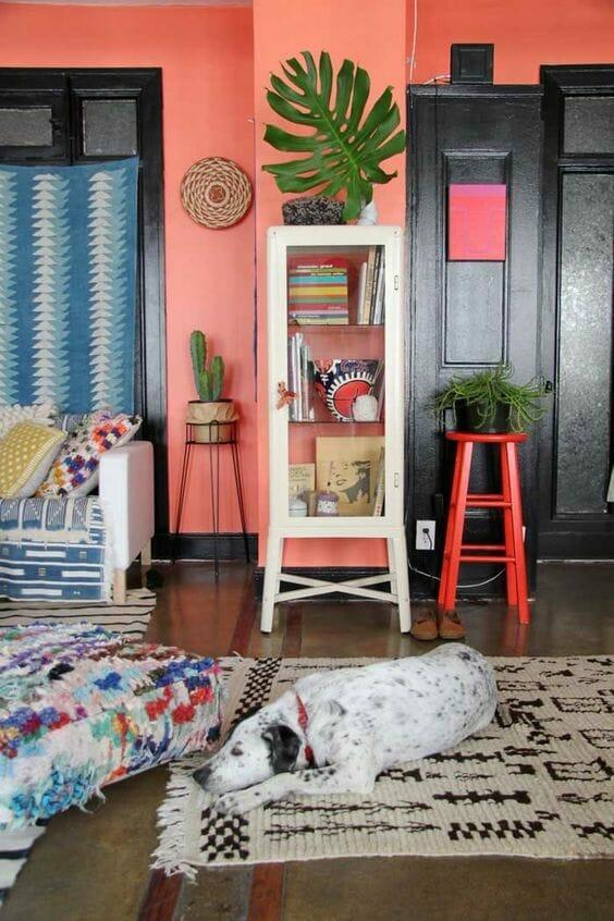 koralų spalva ant sienų - gyvas koralas - su šunimi, gulinčiu ant atniko kilimo, ir egzotinių augalų