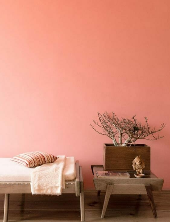 trendy 2019: koralowy kolor ścian z drewnianymi meblami