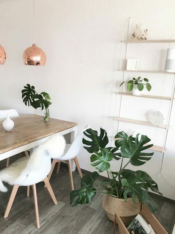 monstera w jadalni stół z drewnianym blatem miedziane lampy