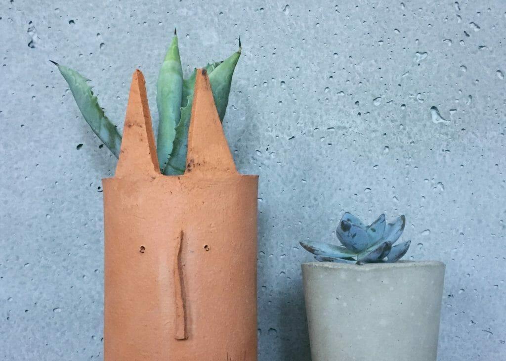 sukulenty gliniana doniczka z uszami betonowa doniczka
