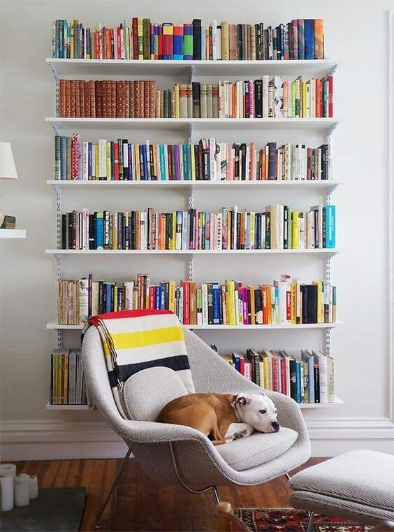 półki na ścianie z książkami i fotel z psem domowa biblioteczka