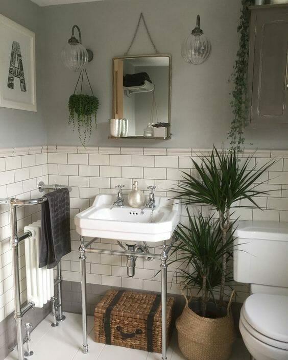 dracena w białej łazience z sanitariatem vintage z srebrnymi dodatkami