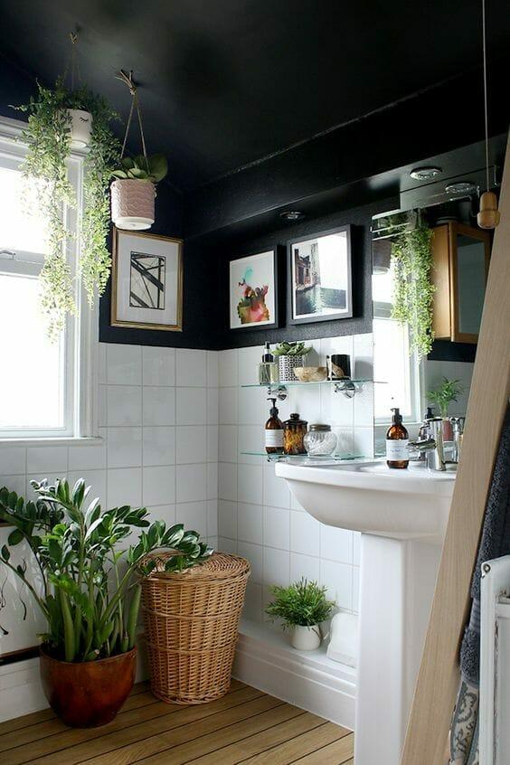 rośliny do łazienki, czarno-biała łazienka z kolorowymi obrazami na ścianach