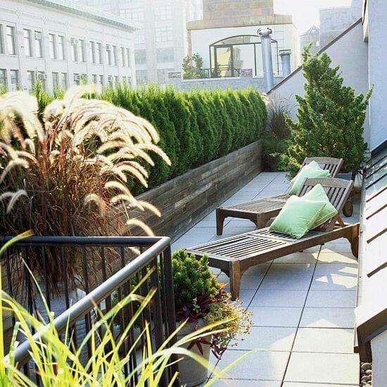 iglaki na balkonie w bloku jak osłonić balkon
