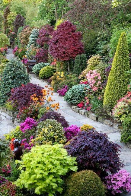 ścieżka kwiaty krzewy rośliny ogrodowe