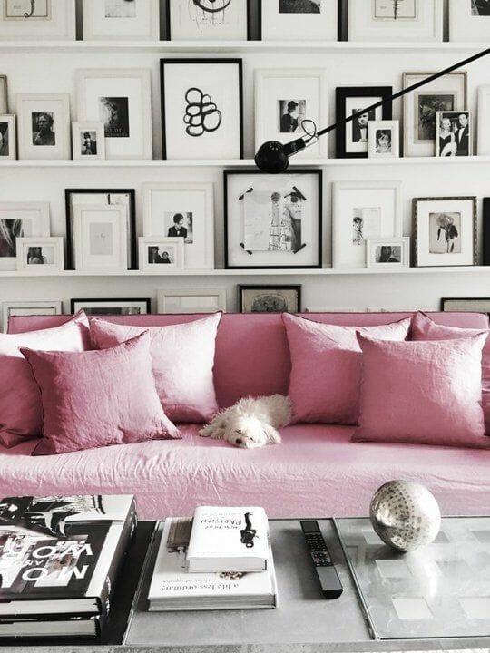 salon z czarno białymi ramkami ze zdjęciami różową kanapą i białym psem
