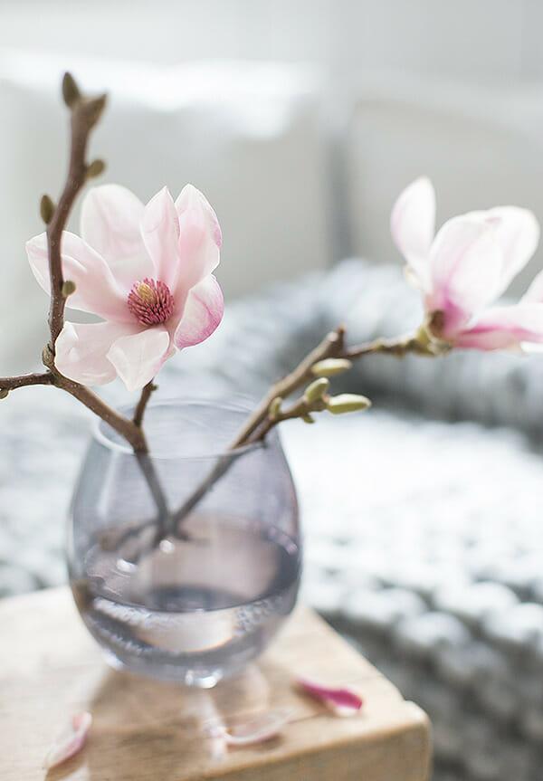 kwiaty magnolii w szklanym naczyniu