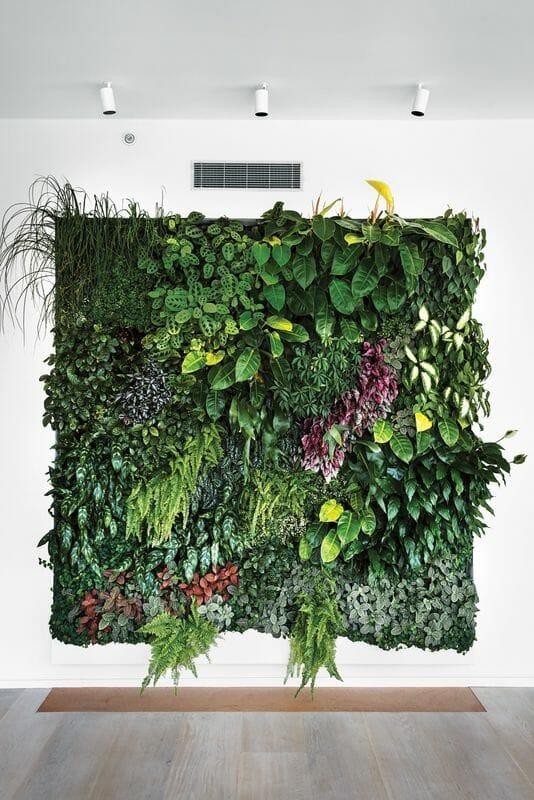 egzotyczny ogród wertykalny w domu