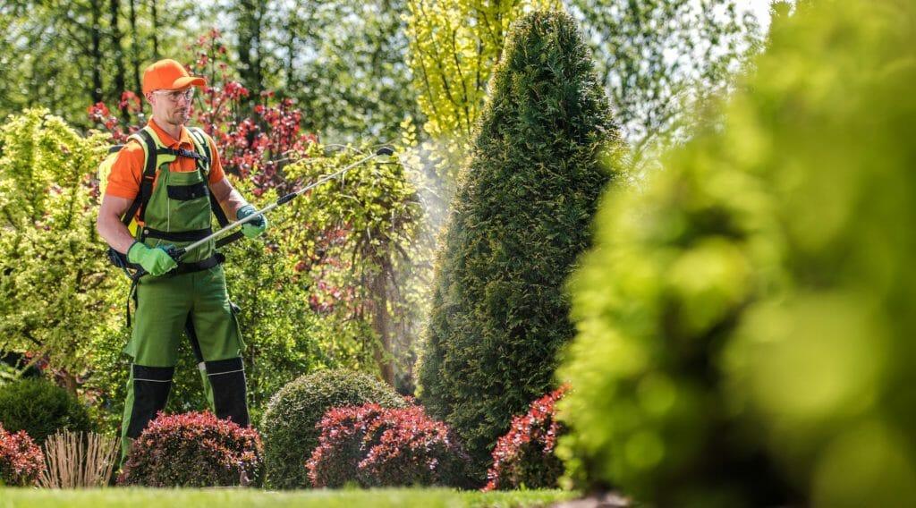 środki ochrony roślin w ogródku