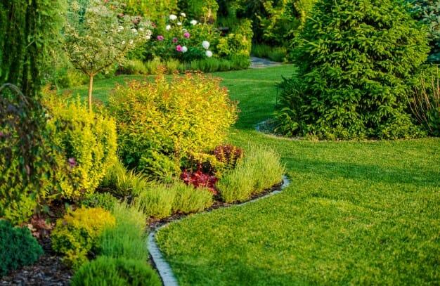 czym nawodnić ogród