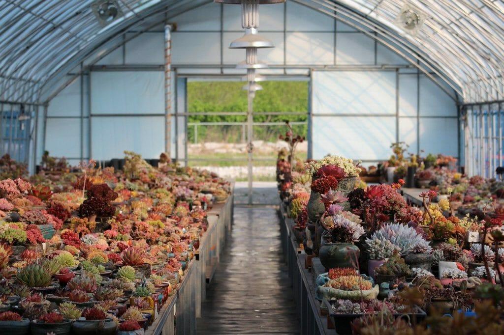 Jak zrobić donice ogrodowe samodzielnie?