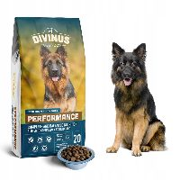 Divinus Performance – sucha karma dla dużych psów