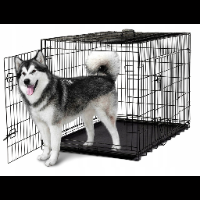 Duża klatka metalowa dla psów