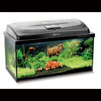 Aquael — akwarium dla rybek 54 l